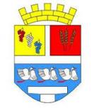 Vinkovci1