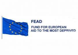 FEAD-570